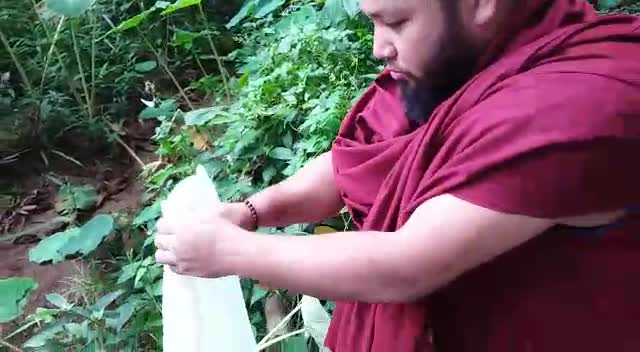 It is nice to see sangha release animals into the wild. Gen Kunchok Palden and Chodrak contributed to releasing of frogs back into the wild. This is wonderful. Compassion is the mainstay of all spirituality. Tsem Rinpoche